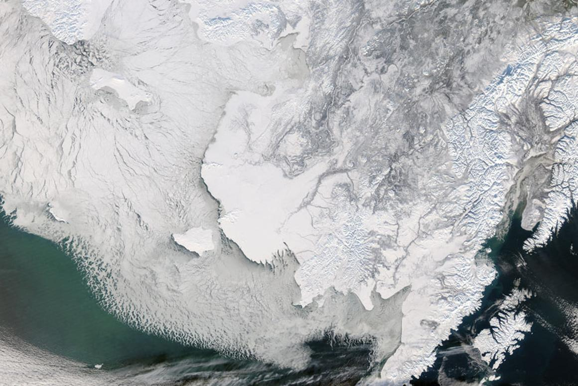 New research indicates a mini ice age can be brought on in a matter or months (Image: NASA)