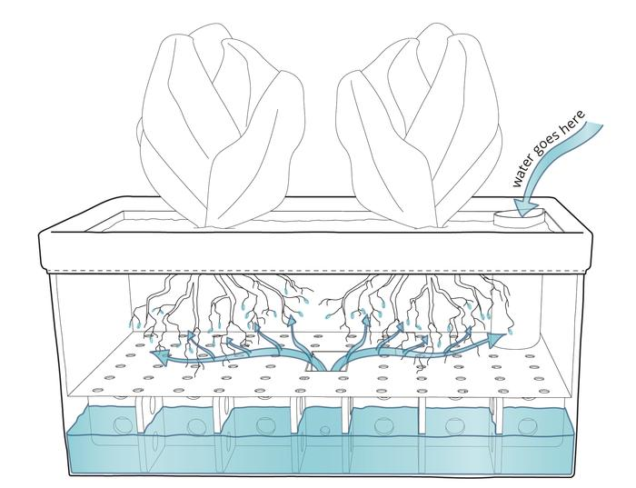 The planter is simply an open-topped Tyvek cuboid with a perforated shelf separating the growth medium from the water below