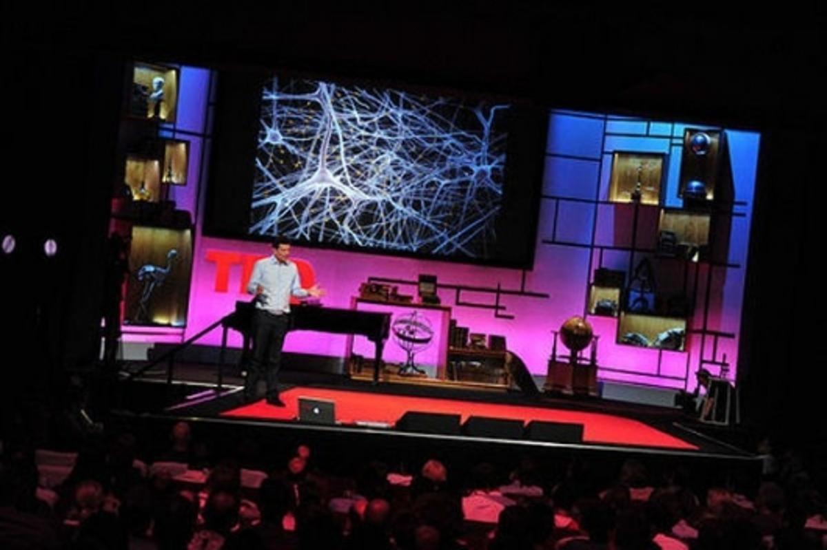 Professor Markram presents at TEDGlobal 2009