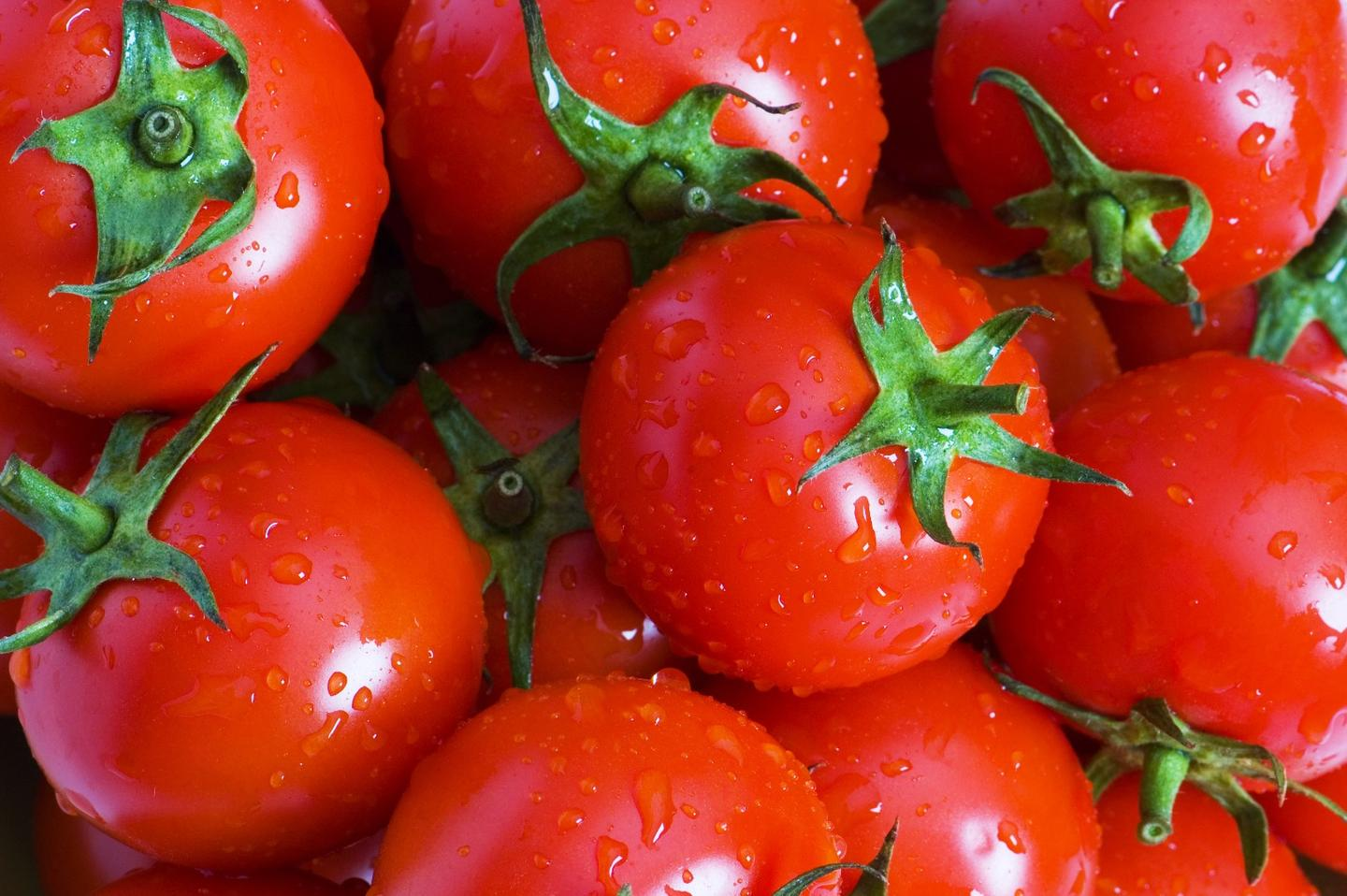 Nutrients in tomatoes and other fresh fruits may help restore lung function