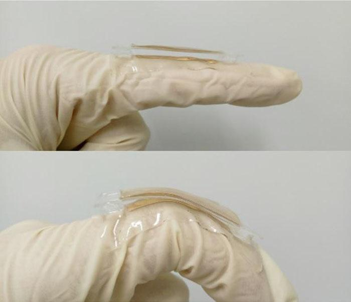 A prototype of the triboelectric nanogenerator that can generate electricity from simple body movements
