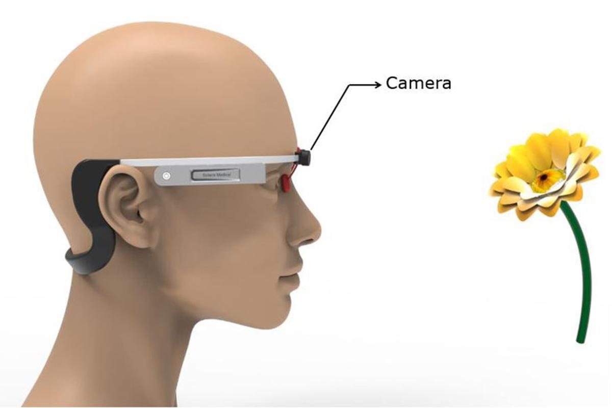 It's hoped a prototype wearable device will allow clinical trials to test whether olfactory stimulation can help treat neurodegenerative disease