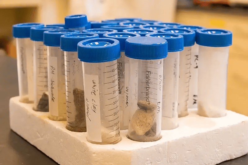 Samples of concrete being analyzed for their microbiome