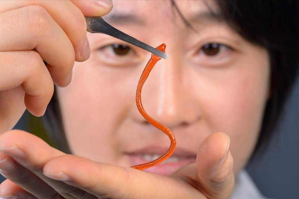 Lead scientist Dr. Jiaxi Cui holds a worm-shaped sample of the material