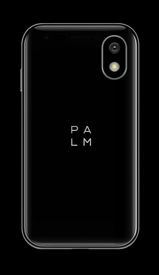 The Palm has a 12-MP main camera and an 8-MP selfie cam