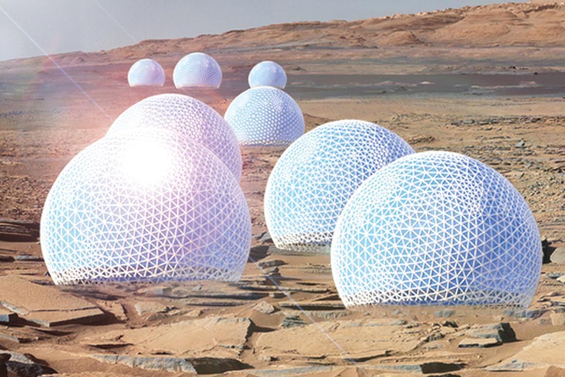An MIT team won first place for urban design with the Redwood Forest, a series of woodsy habitats enclosed in open, public domes that would reside on the Martian surface