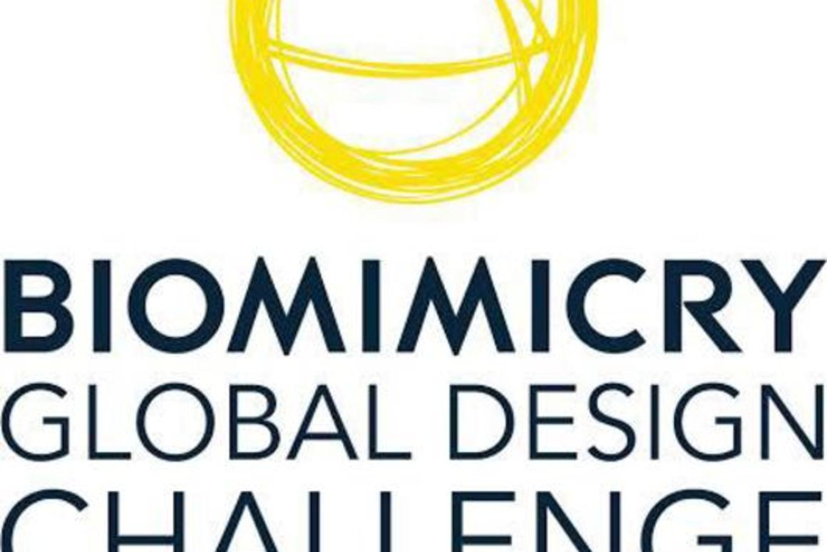 This year's BGDC tasks entrants with developing a biomimetic design that solves an important food system challenge