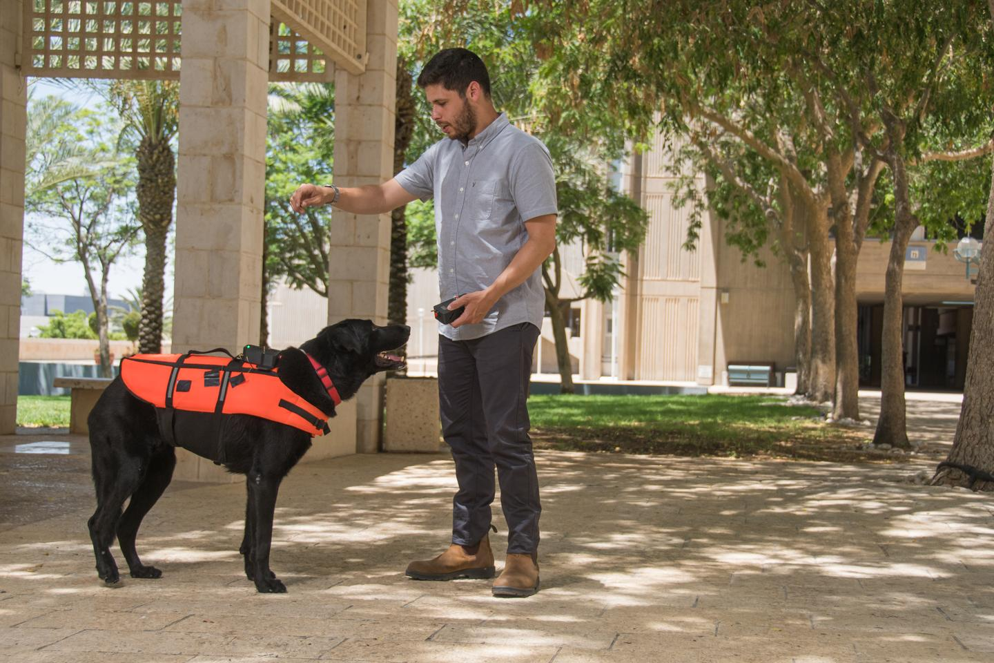 The vest could be used in noisy or otherwise chaotic environments, where trained dogs can't see or hear their handlers