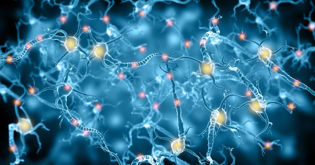 New drug shows promise for preventing and even reversing damage from age-related dementia and stroke