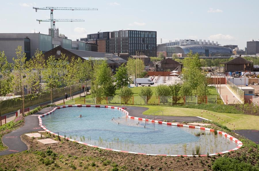 The King's Cross Pond Club freshwater swimming pond measures 40 x 10 m (131 x 33 ft)