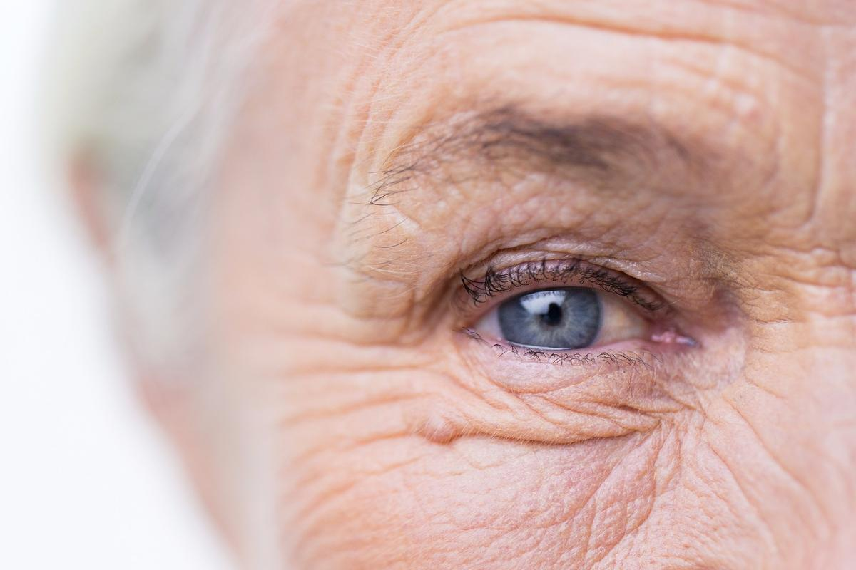 Researchers have discovered that our innate holistic processing abilities are impaired by Alzheimer's disease