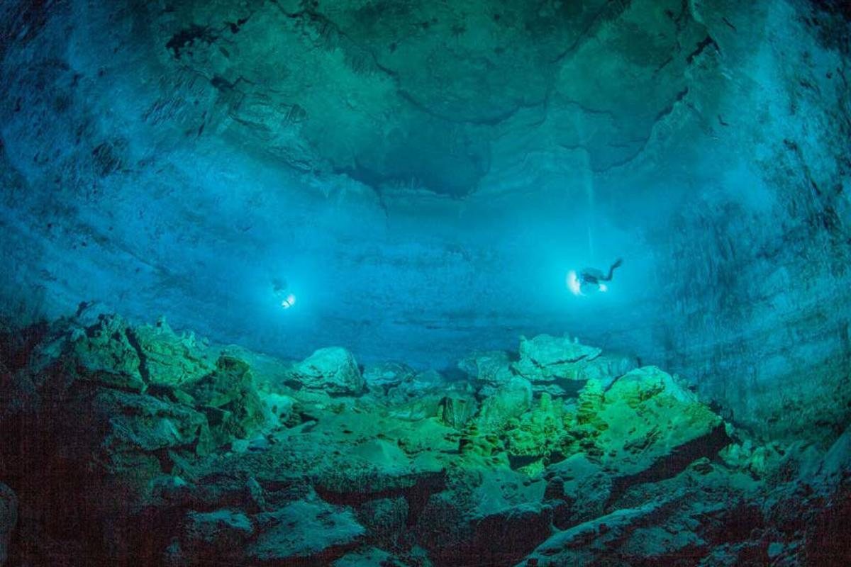 While divers can enter and exit the underwater cave known as Hoyo Negro today, there was no escape for animals who plunged to their deaths here 13,000 years ago when sea levels were lower and the cave was not yet filled with water