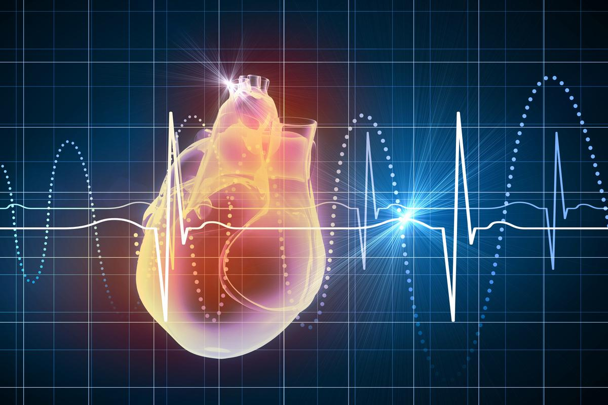 """A new type of """"graphene camera"""" could enable new ways to monitor heart activity, along with other cells in the human body"""