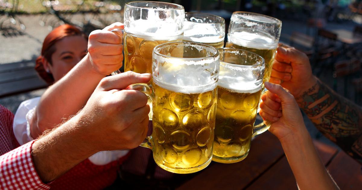 Brain region that influences binge drinking identified