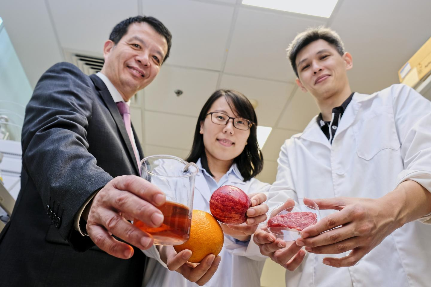 The preservative has been successfully tested on fruit juice and meat samples