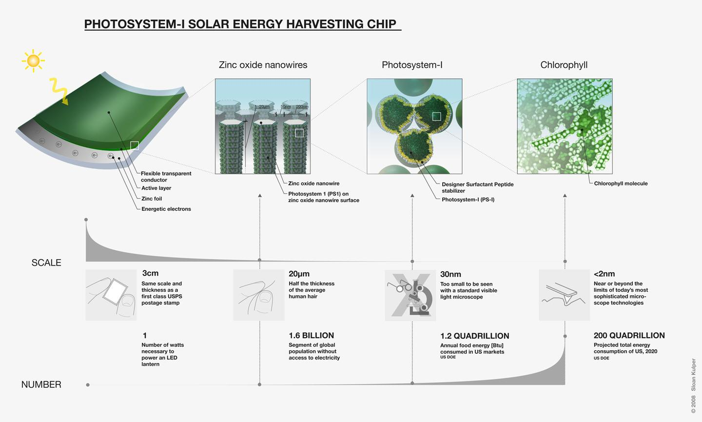 Schematic of MIT's Photosystem-I solar energy harvesting chip