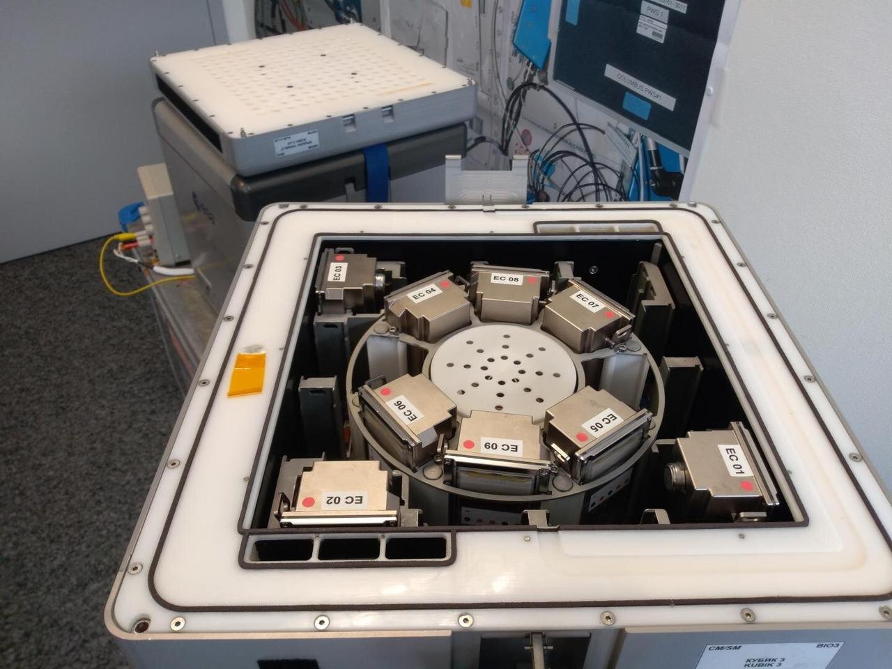 Biomining reactors loaded into incubators