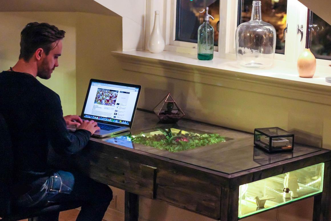 Daniel Zellor using his laptop on Terrarium Desk (Photo: Daniel Zeller)