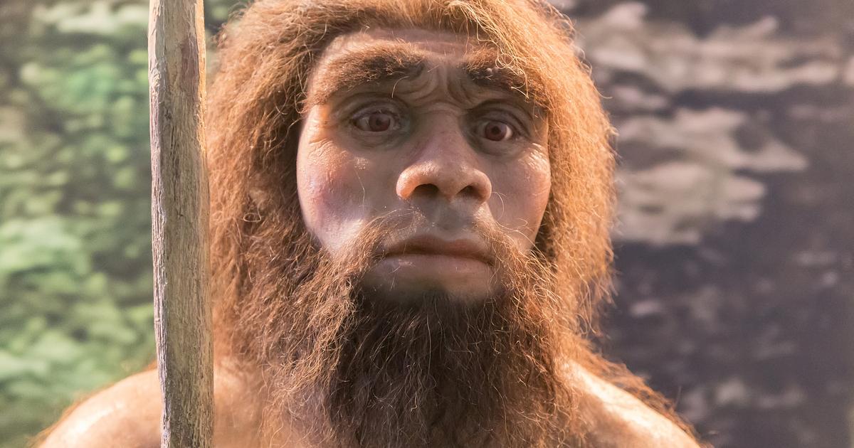 50,000-year-old poop reveals Neanderthals' gut microbiomes