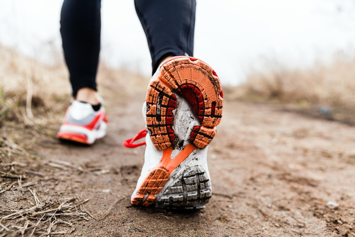 New research in mice has found a new connection between exercise and improved muscle repair ability