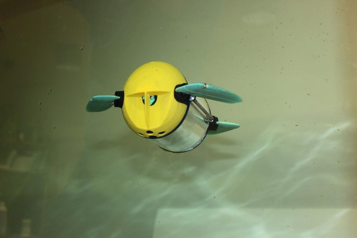 An early version of the U-CAT sea turtle robot