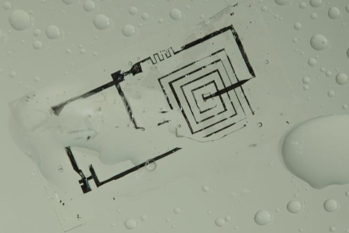 A biodegradable integrated circuit during dissolution in water (Photo: Beckman Institute, University of Illinois and Tufts University)