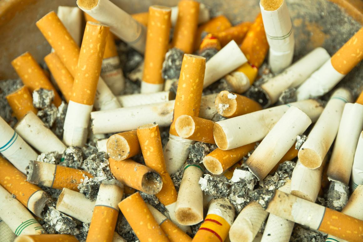 Vancouver's cigarette butts are being used to manufacture shipping pallets, among other things (Photo: Shutterstock)