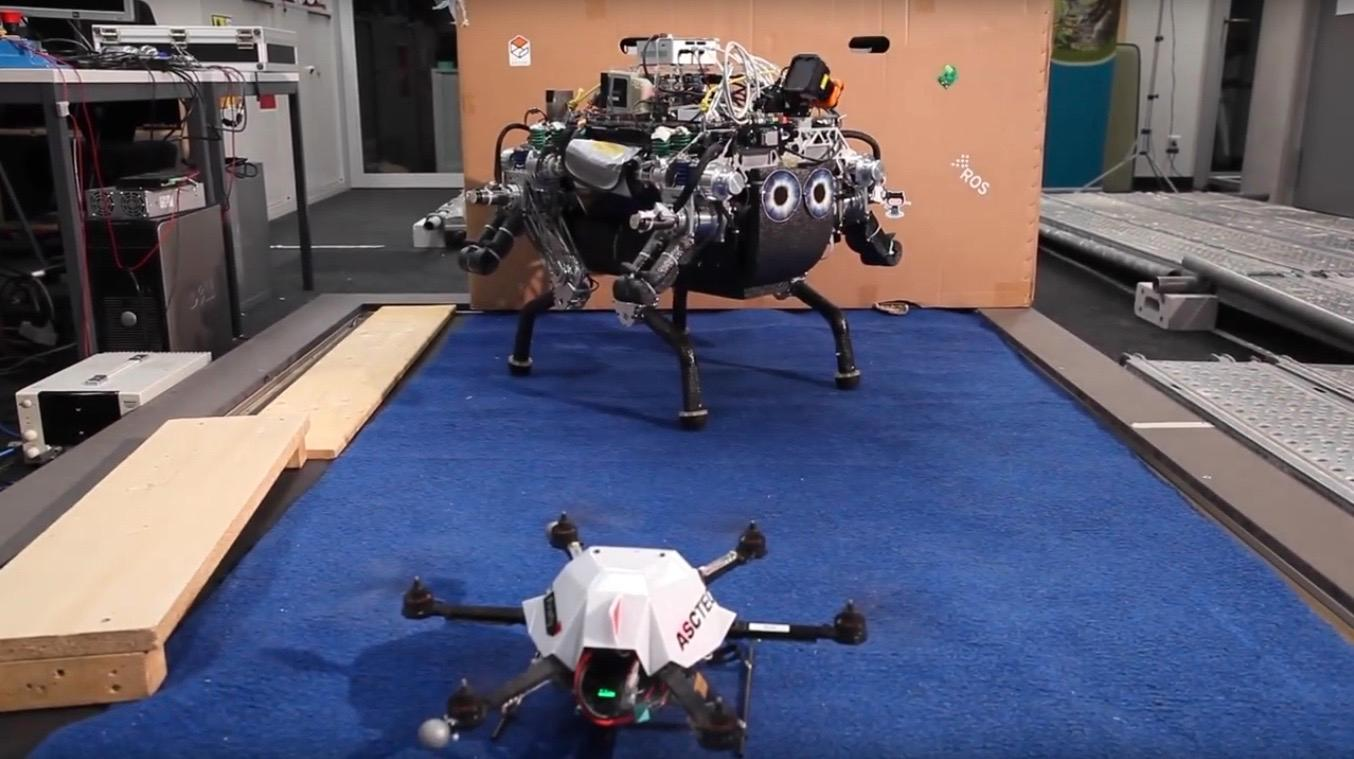 The quadruped robot and the hexacopter, which worked together in the study