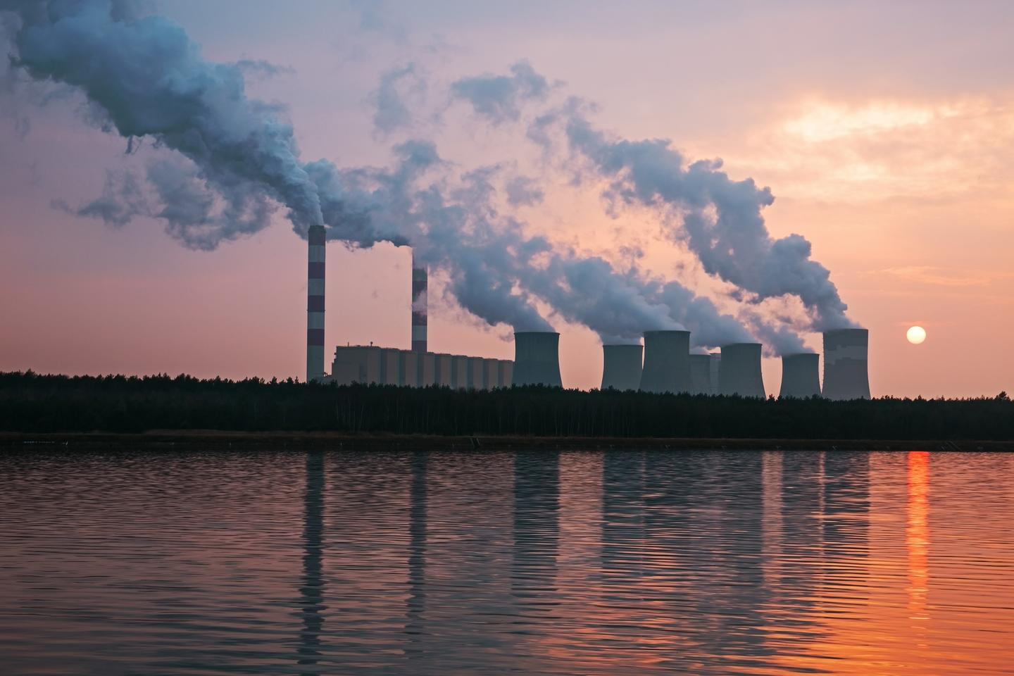 A new report has painted a bleak picture for the health of the planet despite the impact of COVID-19