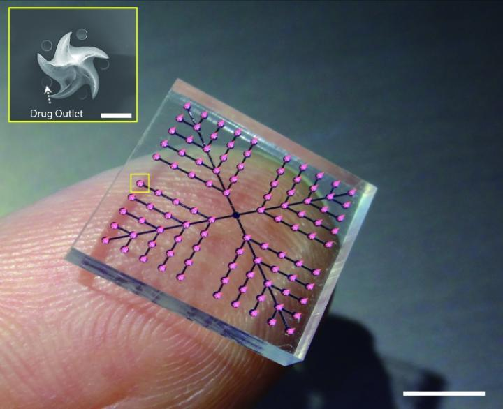 The patchincorporates fang-inspired microneedles combined with microchannels filled with liquid medication