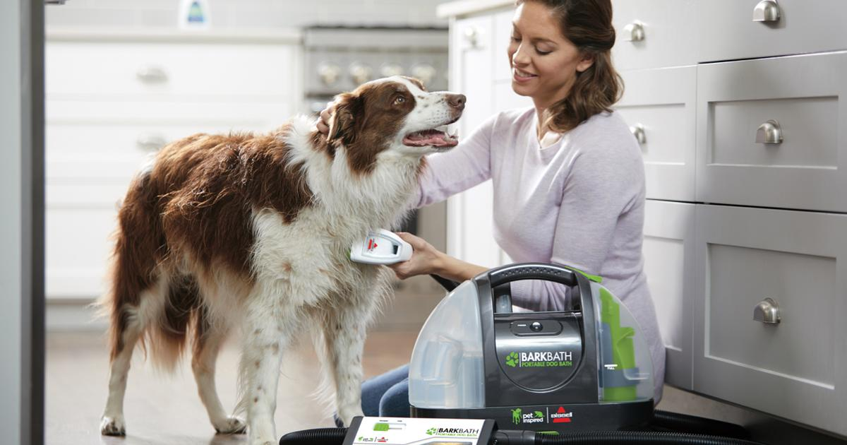 Portable dog-washer cleans your canine like it's a rug