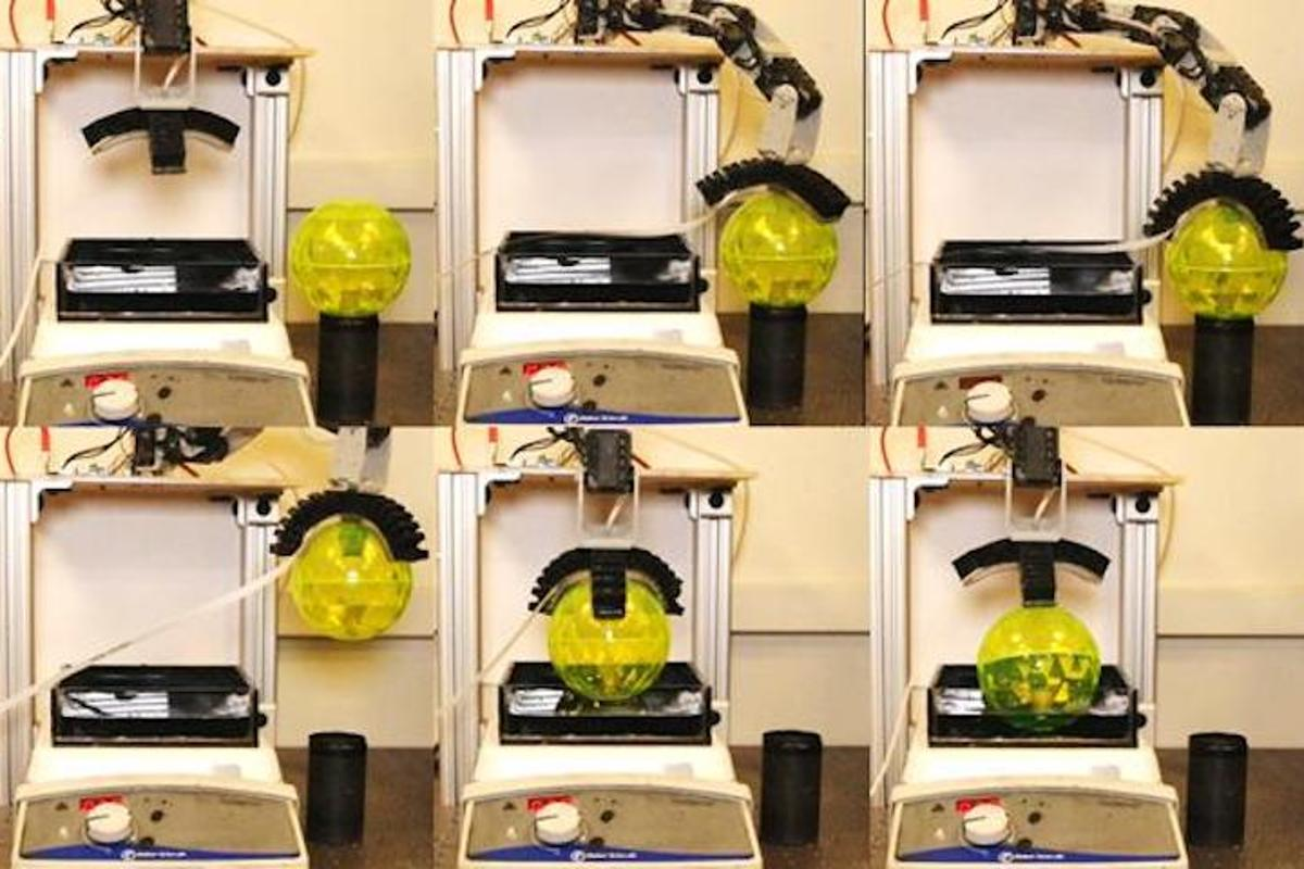 """A new type of robotic arm has the ability to """"taste"""" for specific chemicals"""