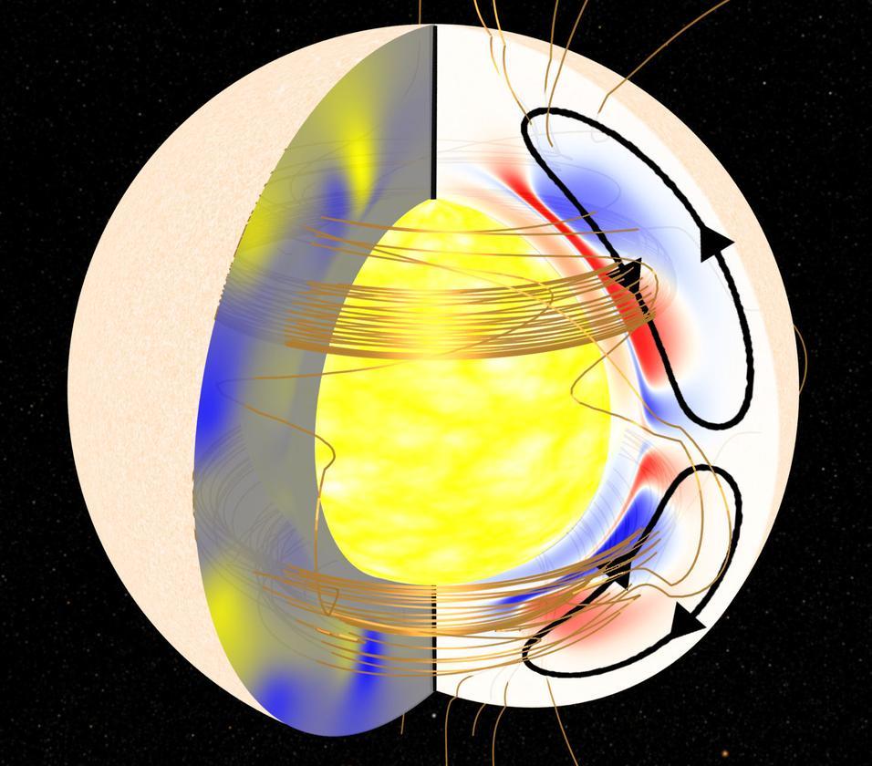 Cutaway shows plasma flows inside the sun