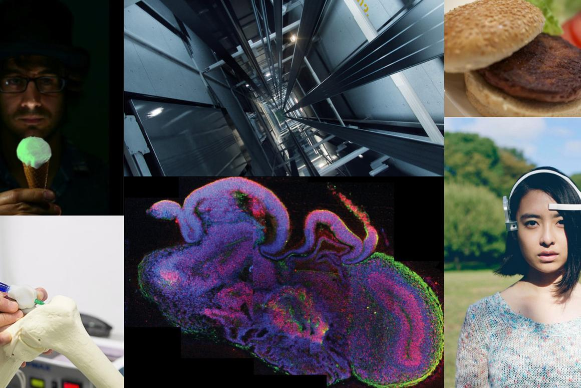 Looking back on a year filled with scientific accomplishment