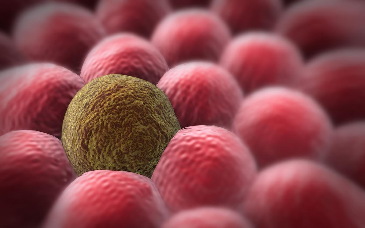 """Oxford researchers have developed a new technique that can track the """"life histories"""" of cancer cells"""