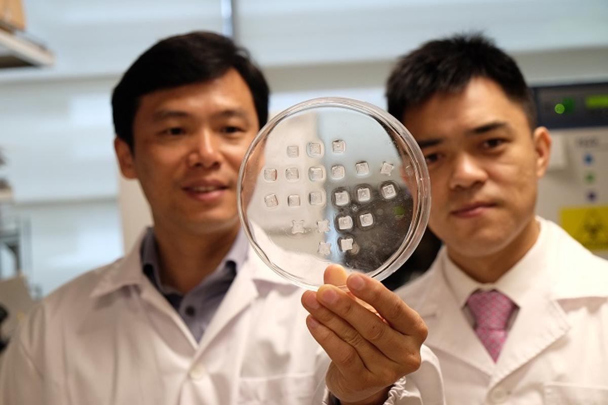 Prof. Chen Peng (left) and Asst Prof Xu Chenjie, with a batch of the patches