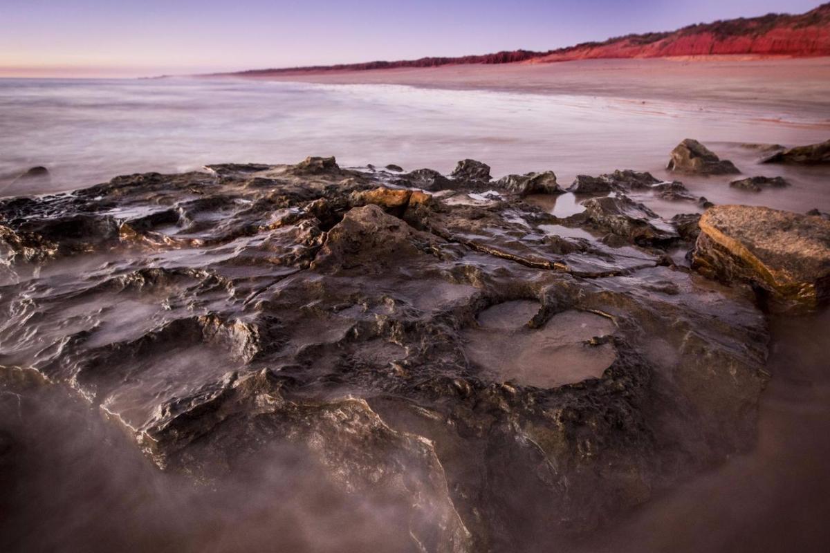 Dinosaur tracks in the Walmadany area