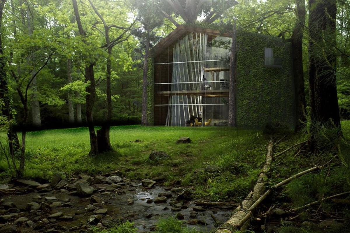 The eco-treehouse concept is designed to make living among the trees a little greener