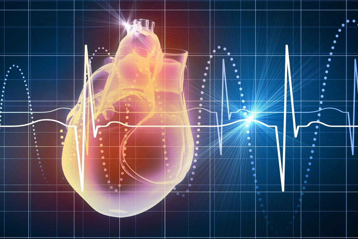 A new prototype pacemakeris wireless,battery-free and can be implanted directly into a patient's heart