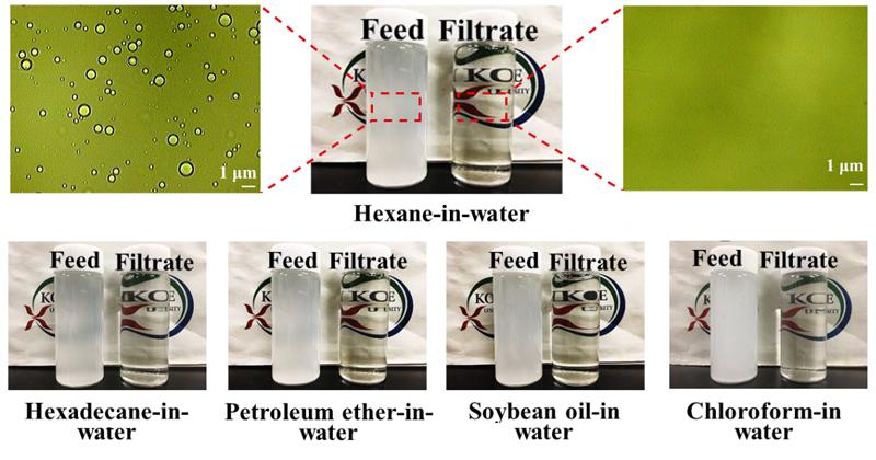 Various oily emulsions before (left) and after filtration via the membrane