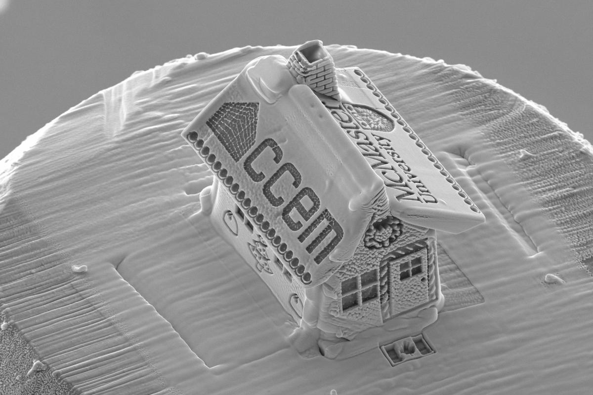 "The ""gingerbread"" house is a mere 6 microns wide by 10 microns long"