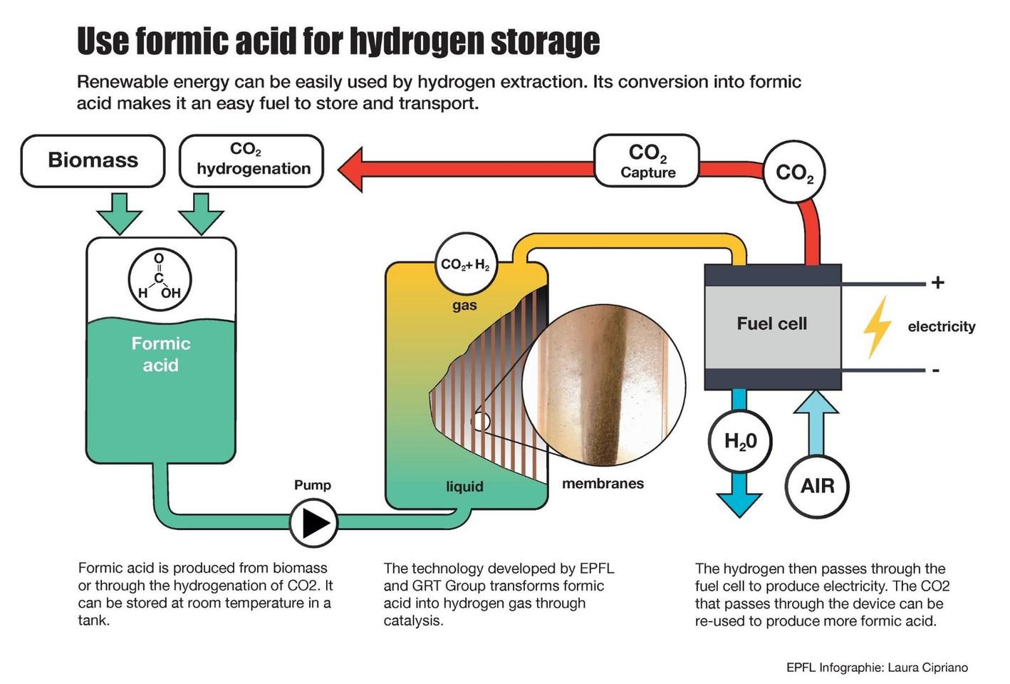 A diagram of how the EPFL team's formic acid fuel cellworks