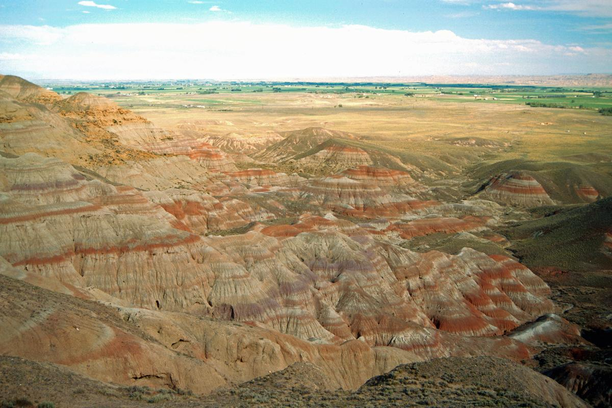 The banded sedimentary rock layers of the Willwood formation in Wyoming provide clues as to future climate change (Photo: Scott Wing, Smithsonian Institution)