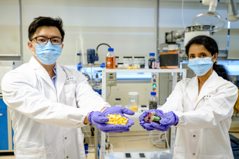 Lead scientists Asst. Prof. Dalton Tay (left) and Prof. Madhavi Srinivasan
