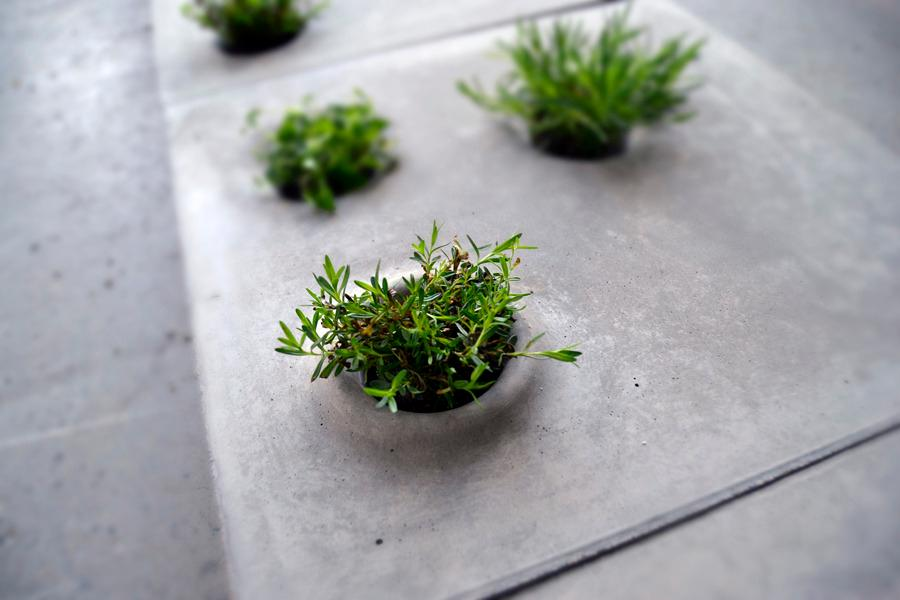Grey to Green is a set of paving slabs allowing plants and vegetation to reclaim some space in urban environments