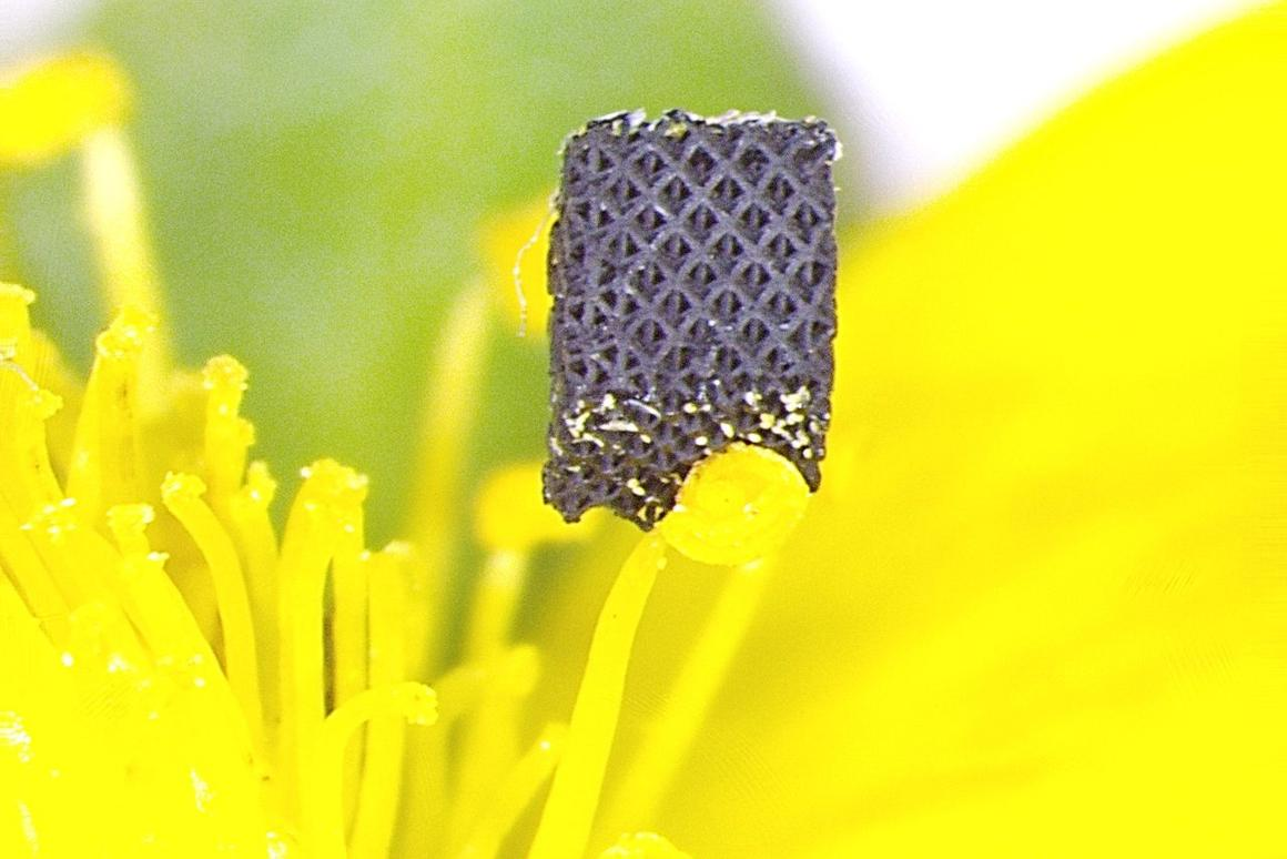 A 3D-printed piece of graphene aerogel, that's so light it can balance on top of a strawberry blossom