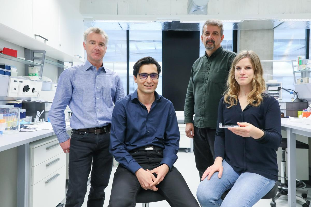 Scientists at Switzerland's EPFL say their new hydrogel has opened up some exciting possibilities in tissue regeneration