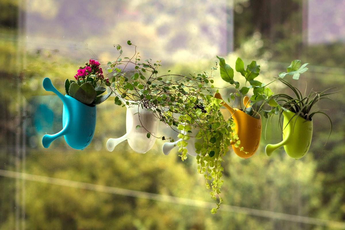 You can either plant flowers, herbs or other greenery directly into the Livi, or just place an appropriate pot inside it