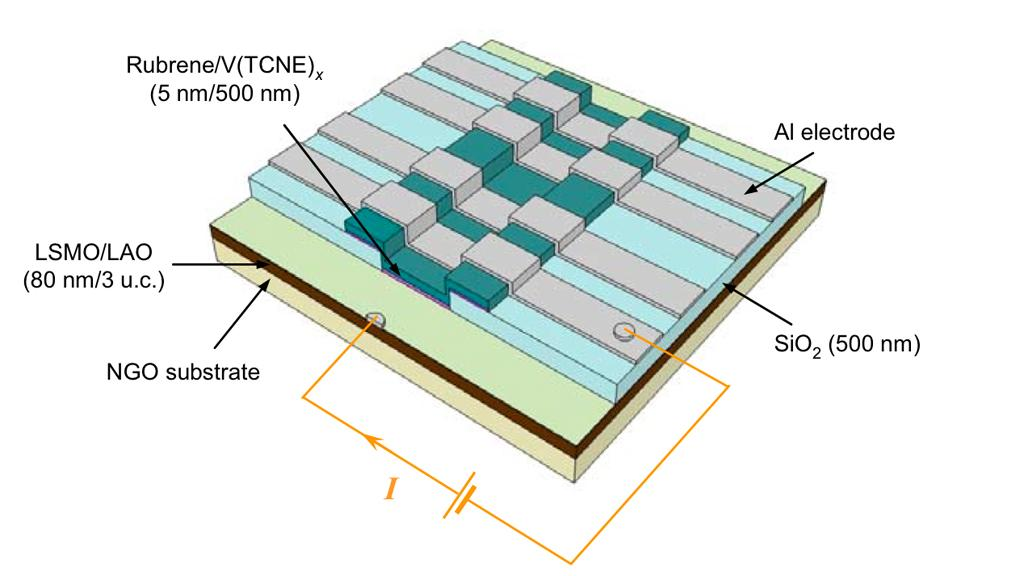 The hybrid magnetic tunnel junction fabricated to achieve electrical detection of spin polarization of the organic-based magnetic semiconductor
