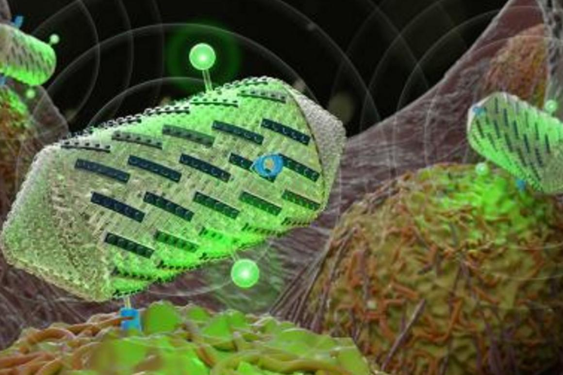 The researchers adjusted aprotein on the shell of thenanostructures, operning the door tocolor ultrasound images